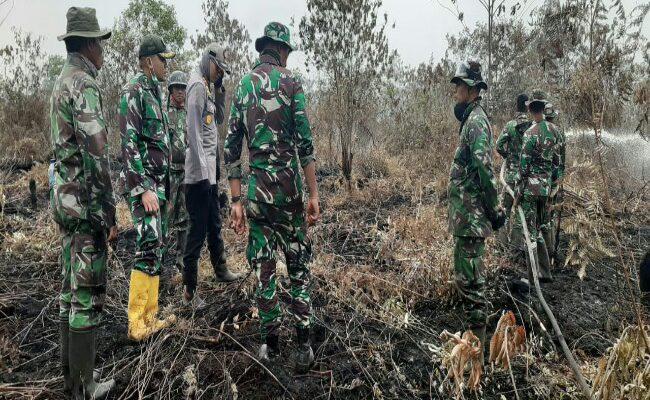 Dua Pelaku Pembakaran Hutan Riau Ditangkap