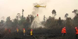 Status Siaga, BPBD Riau Belum Gunakan Bom Air untuk Padamkan Karhutla