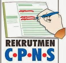 BKD Rohil Kirimkan Formasi CPNS 2014