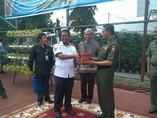 58 Kelurahan se-Pekanbaru Dilatih Bertanam Hidroponik