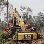 Two Years, APRIL and APP Deforestation of Riau Forest about 174 Thousand Hectares