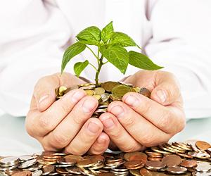 Investasi Buat Pekerja Pemula
