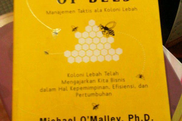 The Wisdom of Bees, Keajaiban Organisasi Lebah