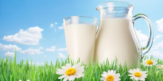 Aturan Mengonsumsi Susu