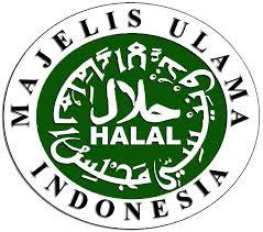 Perusahaan Pekanbaru Jangan Paksa Karyawan Muslim Pakai Atribut Natal