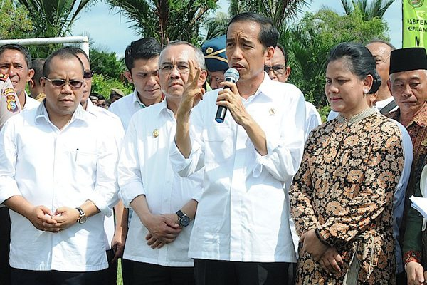 Jikalahari Urges Jokowi to Review the Corporate License in Natural Forest and Peat of Riau