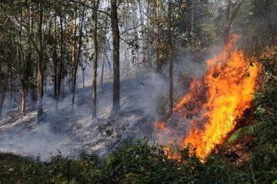 Di Sentil Pangdam, P3E Kebakaran Jenggot