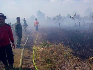 Tak Sengaja, 4 Hektar Lahan di Bengkalis Ludes Terbakar