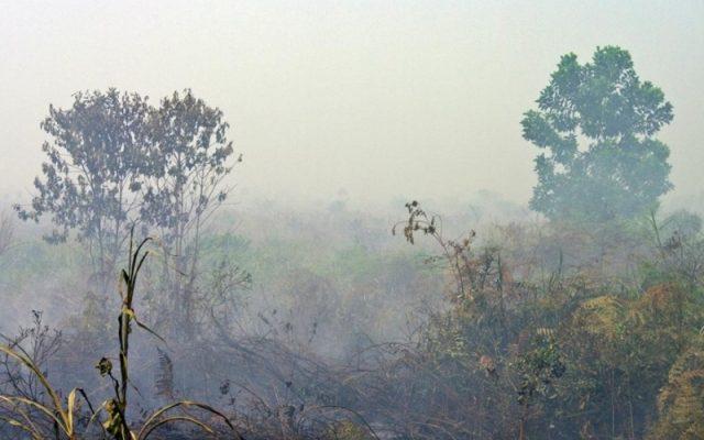 Titik di Riau Api Tinggal 3