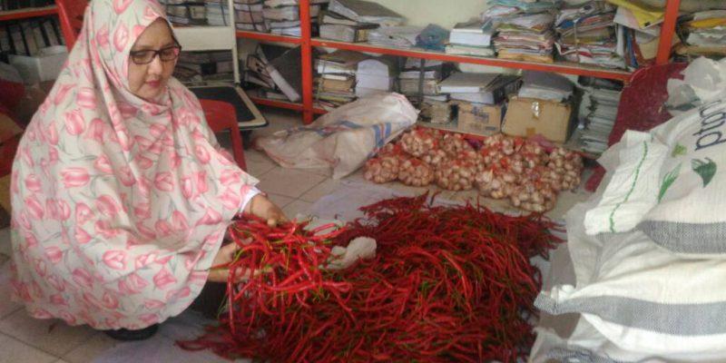 Harga Cabai Merah Anjlok di Siak, Ini Respon Bulog