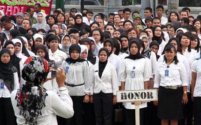 Pengurangan Tenaga Honorer Dinkes Rohil, Syamsul: Bahasa yang Sering Terdengar Iya