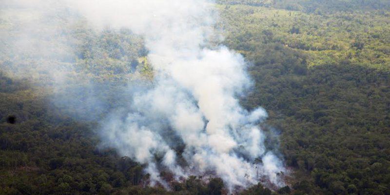 Riau Dorong Jambi Agar Segera Tetapkan Status Siaga Karhutla
