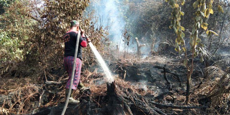 Hari Ini BPBD Lakukan Pertemuan Bahas Daerah yang Sudah Terbakar