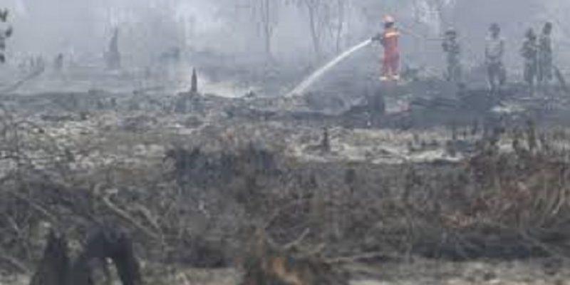 Total Luas Lahan Terbakar di Riau Hampir 1.000 Ha, BPBD: Satgas Standby