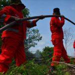 Jikalahari Serahkan 65 Surat Agar DPRD Riau Hentikan Karhutla