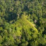 Spesial 63 Tahun: Kerajaan Tertua di Indonesia Ada di Riau?