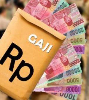 Gubri Punya Keinginan Sendiri Soal Penerapan Sistem Single Salary