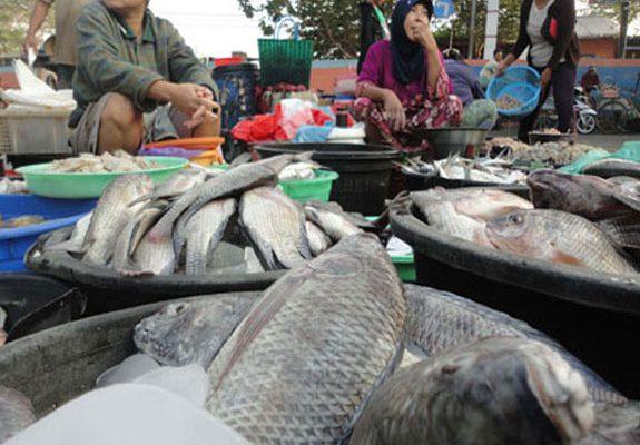 Gurami Naik Rp48 Ribu per Kilogram, Berikut Harga Ikan di Pekanbaru Akhir Pekan Ini