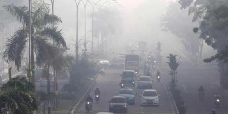 Warga Pekanbaru Keluhkan Bau Asap Menyengat, BMKG Sebut Masih Normal