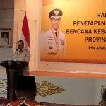 Sah, Status Siaga Karhutla Riau Sudah Ditetapkan, Berlaku Hingga 31 Oktober 2020