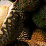 Harga Durian Anjlok Akibat Corona