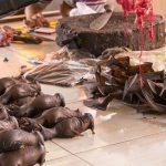 Pasar di Sulawesi Ini Seperti di Wuhan, Jual Kelelawar Hingga Anjing, Internasional Khawatir Sebaran Corona