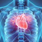 Cara Aman Mencegah Penyakit Jantung Secara Alami
