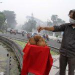 Ratusan Seniman Riau Bakal Dapat Bantuan COVID-19