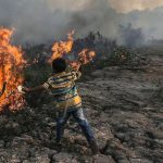 Karhutla di Riau, Men-LKH: Kita 'Paksa' Sampai Kapok !
